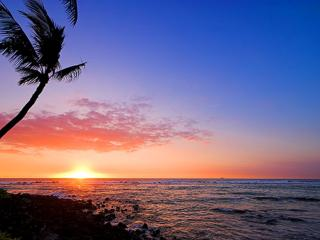Elegant White Sands Estate with Tropical Grounds - Kailua-Kona vacation rentals