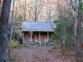 Mountain Retreat - Saluda vacation rentals