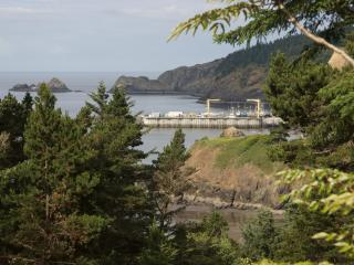 Battle Rock House - Port Orford vacation rentals