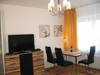 City Center, near major sights, walk to everywhere - Vienna vacation rentals