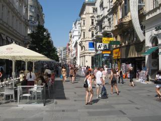 City Center, near major sights, walk to everywhere - Wieden vacation rentals
