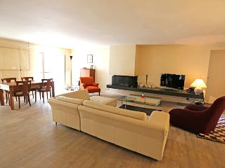 A Large Three Bedroom Between Opera and the Louvre - Paris vacation rentals