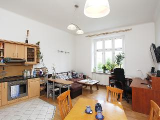 Quiet apartment in diplomatic area - Prague vacation rentals
