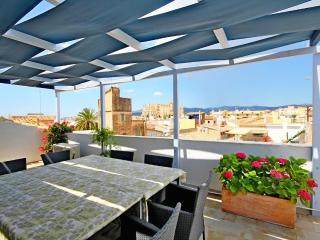 Calatrava Seaview terrace 3ppl - Palma de Mallorca vacation rentals
