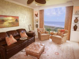The Vista, 1 BR, Romantic, Sweeping Oceanviews! - Kiawah Island vacation rentals