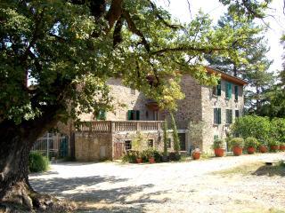Beautiful villa for family reunions, Wi-Fi - Pergine Valdarno vacation rentals