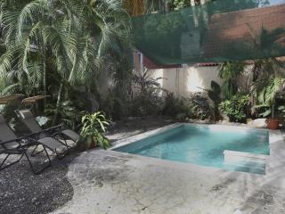 NEW ! IN TOWN  100m FROM SAMARA THE BEACH - Playa Samara vacation rentals