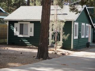 Darling Cabin at the Lake - Big Bear Lake vacation rentals