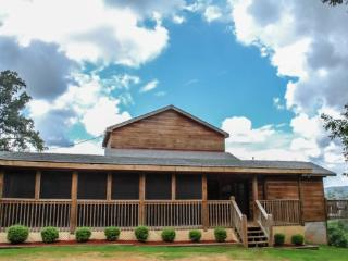 GOOSE ISLAND GETAWAY- 3BR/2.5BA- SUPER SECLUDED CABIN SLEEPS 7, AWESOME MOUNTAIN VIEW, GAS LOG FIREPLACE, HOT TUB, SCREENED PORCH! ONLY $120 A NIGHT! - Blue Ridge vacation rentals