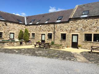 The Old Byre - Frosterley vacation rentals