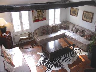 Charming apartment, on quay de Seine, in le Marais - Paris vacation rentals