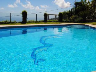 Villa - Arco da Calheta vacation rentals
