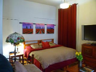 Classic DELIGHTFUL EAST VILLAGE ***+ - New York City vacation rentals