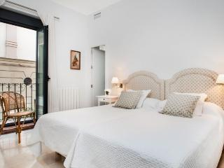 Archivo de Indias II,  best location in Seville for a charming apartment! - Seville vacation rentals