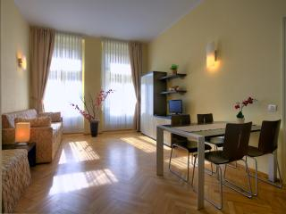 Brand new luxurious in the centre 6 - Prague vacation rentals