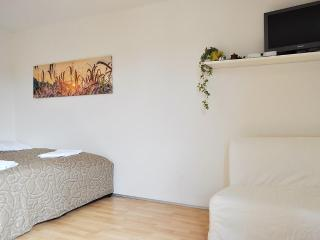 Magnificent studio near the center - Prague vacation rentals