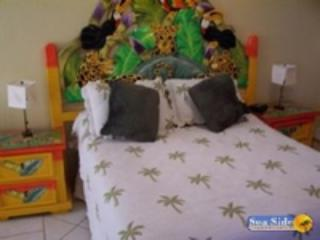 Casa Blanca CA 202 - Northern Mexico vacation rentals