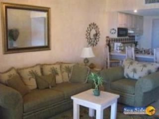 Princesa De Peñasco D 504-V - Northern Mexico vacation rentals