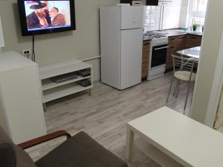 Apartment Sochi - Sochi vacation rentals