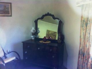 MANDEVILLE'S NEWEST  BED AND BREAKFAST - Saint Elizabeth vacation rentals