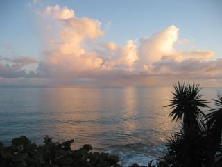 Ocean View Cottages - Saint John's vacation rentals