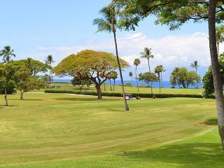 Maui Eldorado: Maui Condo G109 - Ka'anapali vacation rentals