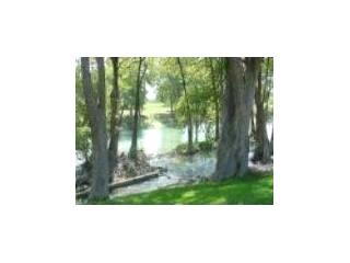 Water Wheel Favorite River Front Condo - Image 1 - New Braunfels - rentals