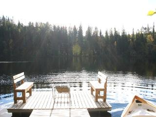Cottage Antis, Mikkeli - Eastern Finland vacation rentals