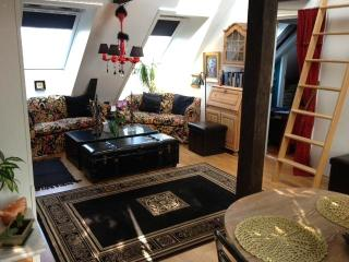 Theatrical Attic Apartment with great views - Oslo vacation rentals