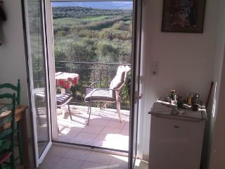 tzamika/ olive tree farm next to the sea  /apartem - Kissamos vacation rentals