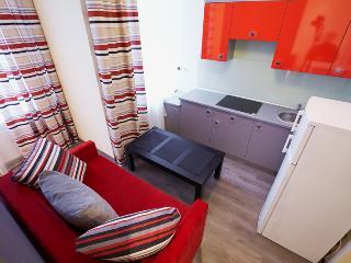 Apartment Fedkovycha - Lviv vacation rentals