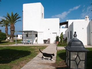 CASARA 2, Tower with sea view - Zahora vacation rentals