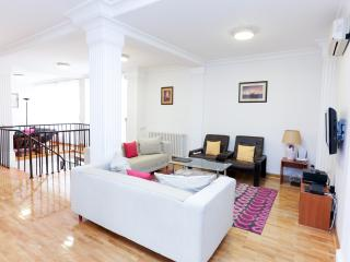 Penthouse Vracar - 154m2 - 4 bedrooms - Belgrade vacation rentals