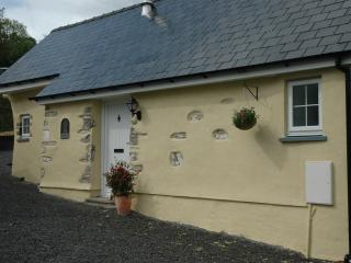 Carew cottage - Llangrannog vacation rentals