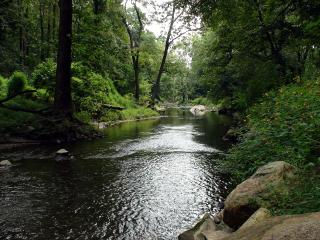 Charming Creekside Apartment with Cozy Fireplace - Greater Philadelphia Area vacation rentals