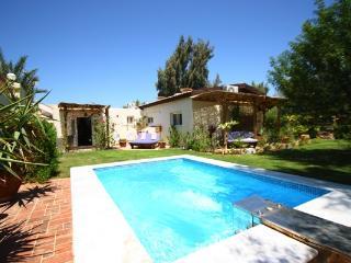 Lagoon Villa Seahorse Apartment - pool, wifi & BBQ - Dahab vacation rentals