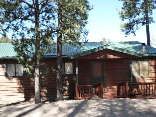 Sun Mountain Cabin - 3 Bed 3 Bath Hot Tub Cabin - New Mexico vacation rentals