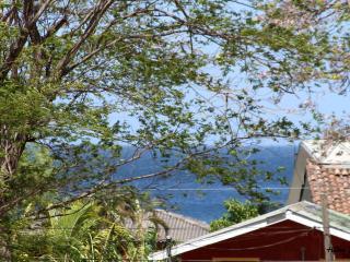 Pura Vita - Gulf of Papagayo vacation rentals