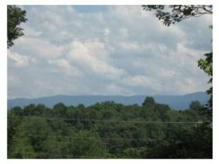 Walk to Historic Downtown Greeneville TN - Greeneville vacation rentals