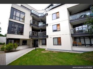 Beautiful Apartment in Historic Dublin - Dublin vacation rentals