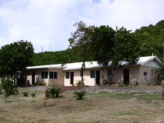 st croix apartments - Christiansted vacation rentals