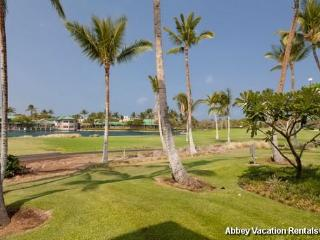 W4-FV N1 - Waikoloa vacation rentals