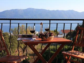 Villa Palma Penthouse Apt - Sucuraj vacation rentals