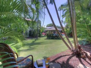Aina Nalu D-108 - Lahaina vacation rentals