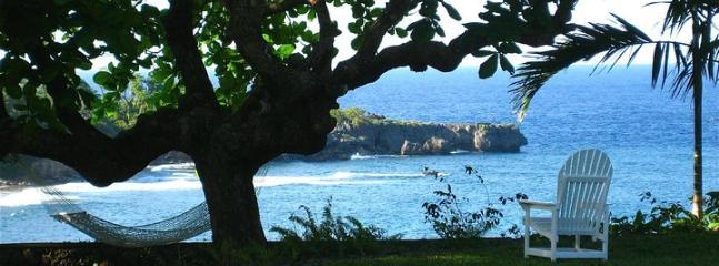 PARADISE GOBLIN HILL 2 BEDROOM - SEA VIEW - Image 1 - Port Antonio - rentals