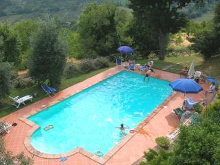 Apartment rental in Agriturismo - Amelia vacation rentals