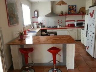 Maison cote Atlantique S-Ouest - Biscarrosse vacation rentals