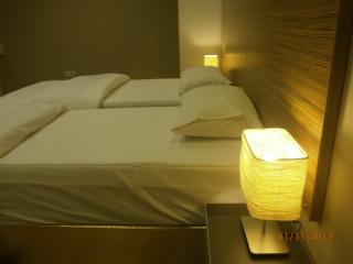 Bluemosque 2+1, Sleep 2-8 Modern Apartment - Aksaray vacation rentals