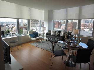 Radian 2BR w/WiFi, Central Boston - Brighton vacation rentals