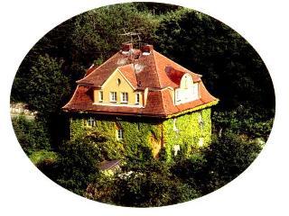 Apartment Villa Burgblick - Bayerisch Eisenstein vacation rentals